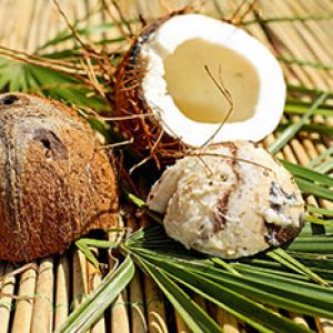 coconut-1501392_1920